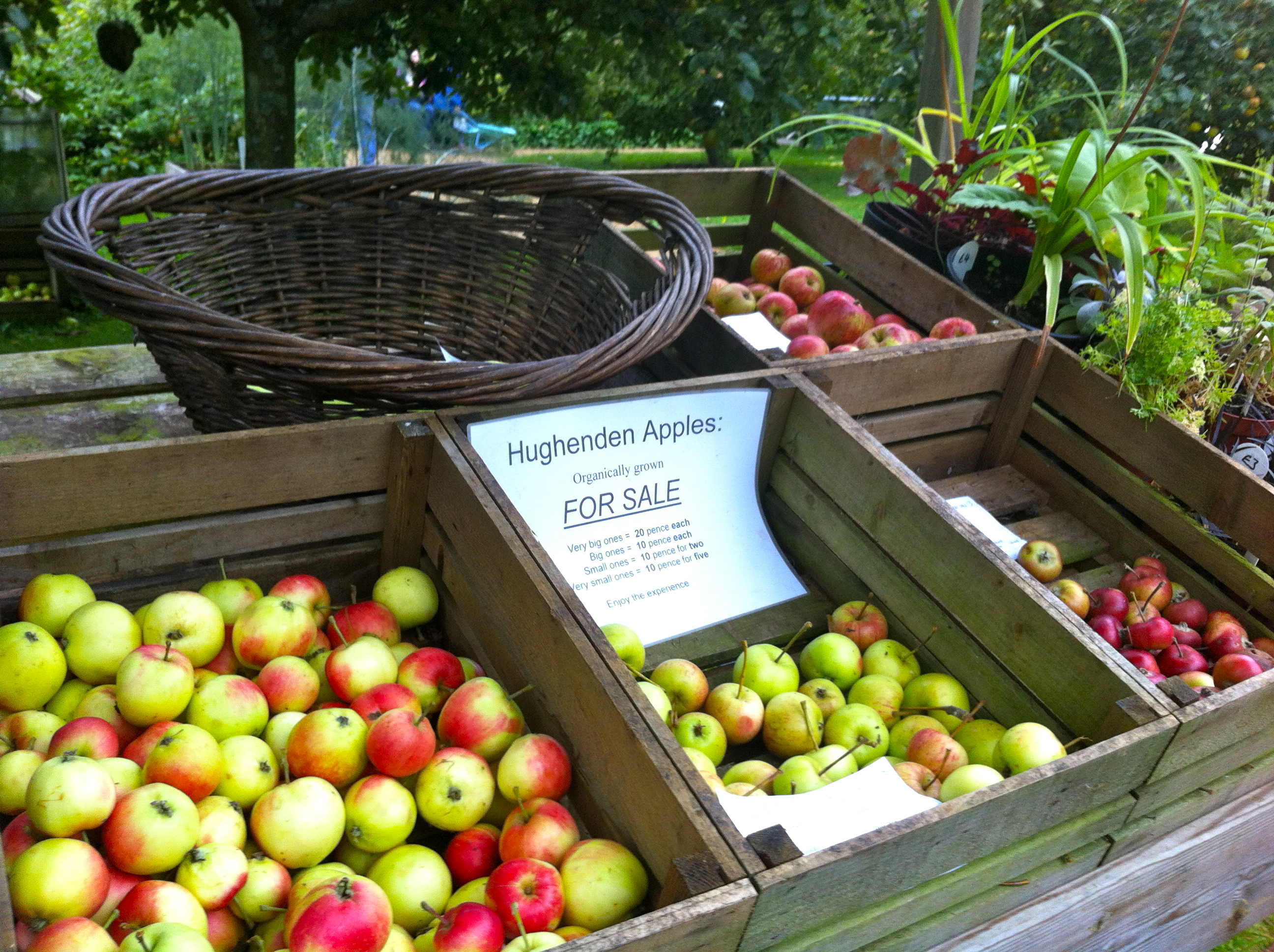 Apple Day at Hughenden Manor