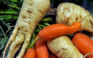 odd-vegetables